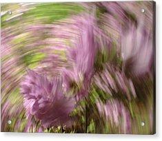 Dreamy Azaleas Acrylic Print