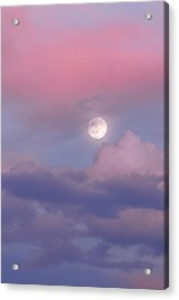 Acrylic Print featuring the photograph Dreamy by Chad Dutson