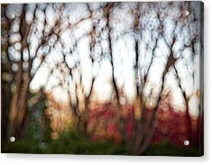 Acrylic Print featuring the photograph Dreamy Fall Colors by Susan Stone