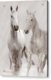 Dreamy Horses Acrylic Print