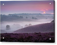 Dreamy Morning Acrylic Print
