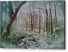 Acrylic Print featuring the photograph Dreamy Snow by Sandy Moulder