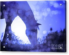 Dreamy Sunrise In Blue Acrylic Print