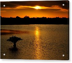 Dreamy Sunset Acrylic Print by Jennifer A Garcia