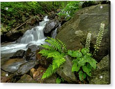 Acrylic Print featuring the photograph Dreamy Waterfall Cascades by Debra and Dave Vanderlaan