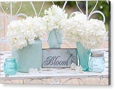 Dreamy White Hydrangeas - Shabby Chic White Hydrangeas In Aqua Blue Teal Mason Ball Jars Acrylic Print by Kathy Fornal