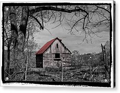 Dressed In Red Acrylic Print by Debra and Dave Vanderlaan