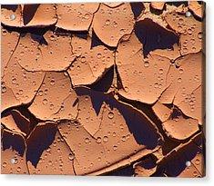 Dried Mud 3c Acrylic Print by Mike McGlothlen