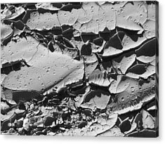 Dried Mud 5 Acrylic Print by Mike McGlothlen