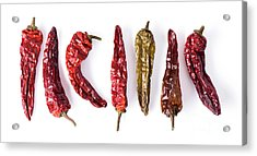 Dried Peppers Lined Up Acrylic Print