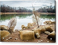 Dried Shrubs At Cherokee Reservoir Acrylic Print