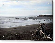 Driftwood And Moonstone Beach Acrylic Print