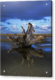 Driftwood And Reflection Acrylic Print