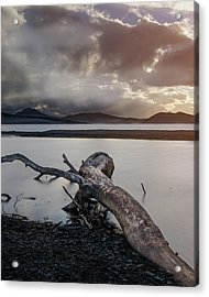 Driftwood At The End Of The World Acrylic Print
