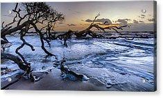 Driftwood Beach 3 Acrylic Print