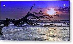 Driftwood Beach 9 Acrylic Print