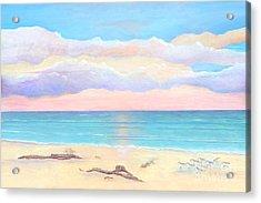 Driftwood Beach Acrylic Print by Frances  Dillon