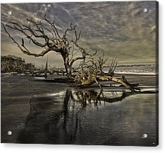 Driftwood Beach Acrylic Print