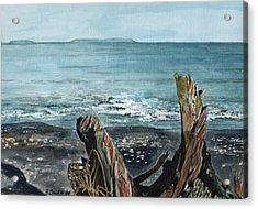 Driftwood Acrylic Print by Brenda Owen