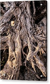 Acrylic Print featuring the photograph Driftwood Close-up by Steven Ainsworth