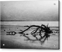 Driftwood Dream In Black And White Acrylic Print