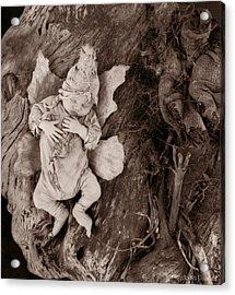 Driftwood Fairy Acrylic Print