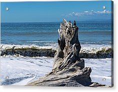 Driftwood In The Surf Acrylic Print