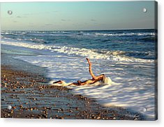 Driftwood In The Surf Acrylic Print by Roupen  Baker
