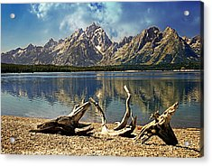 Driftwood Mountain Acrylic Print by Marty Koch