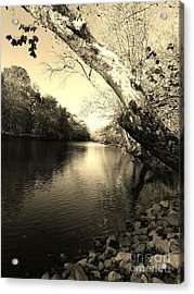 Driftwood River Southern Indiana -sepia Acrylic Print