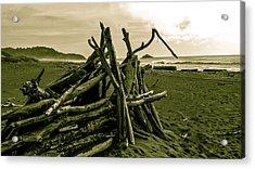 Driftwood Shelter Acrylic Print