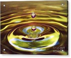 Drip Drop Acrylic Print by Arnie Goldstein