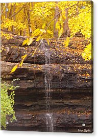 Dripping Springs Waterfall Acrylic Print