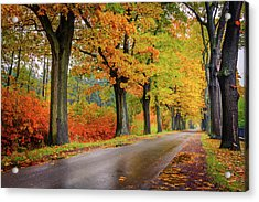 Acrylic Print featuring the photograph Driving On The Autumn Roads by Dmytro Korol