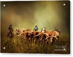Driving The Herd Acrylic Print