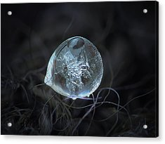 Drop Of Ice Rain Acrylic Print