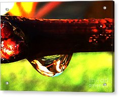 Droplet Acrylic Print by JoAnn SkyWatcher