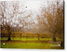 Droplets I Acrylic Print by Derek Selander