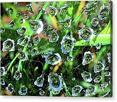 Drops Of Reflection Acrylic Print