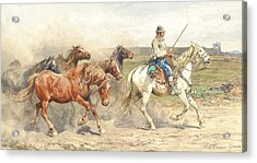 Droving Horses In The Roman Campagna Acrylic Print by Enrico Coleman