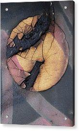 Drown The Sun  Acrylic Print by Jerry Cordeiro
