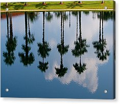 Acrylic Print featuring the photograph Drowning Palms by Ron Dubin