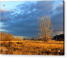 Drumheller Valley Acrylic Print by Jim Justinick