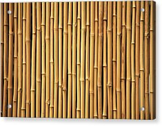 Dry Bamboo Rows Acrylic Print by Brandon Tabiolo - Printscapes
