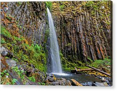Dry Creek Falls Acrylic Print by David Gn