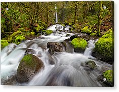 Dry Creek Falls In Spring Acrylic Print by David Gn