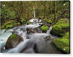 Dry Creek Falls In Springtime Acrylic Print by David Gn