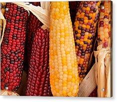 Dry Indian Corn Acrylic Print by Jeff Lowe
