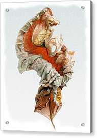 Acrylic Print featuring the photograph Dry Leaf by Vladimir Kholostykh