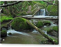 Dual Falls Acrylic Print by Glenn Gordon